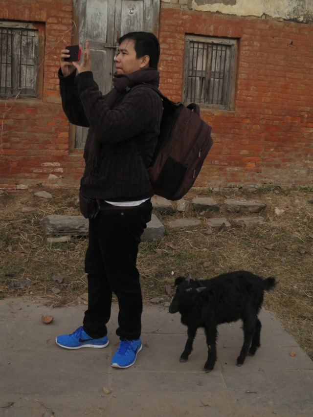 Willy is so famous in Nepal even a cute little black goat followed him along the way!