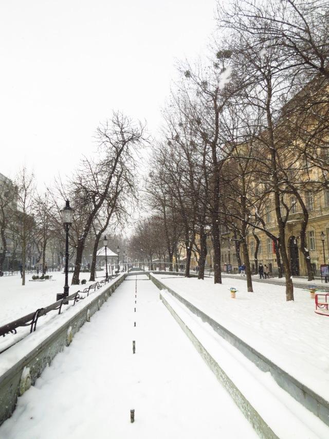 Fresh snow carpet in Bratislava