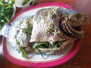Never thought steamed fish with herbs from the garden could be so yumm!